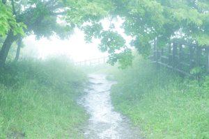 霧の先には
